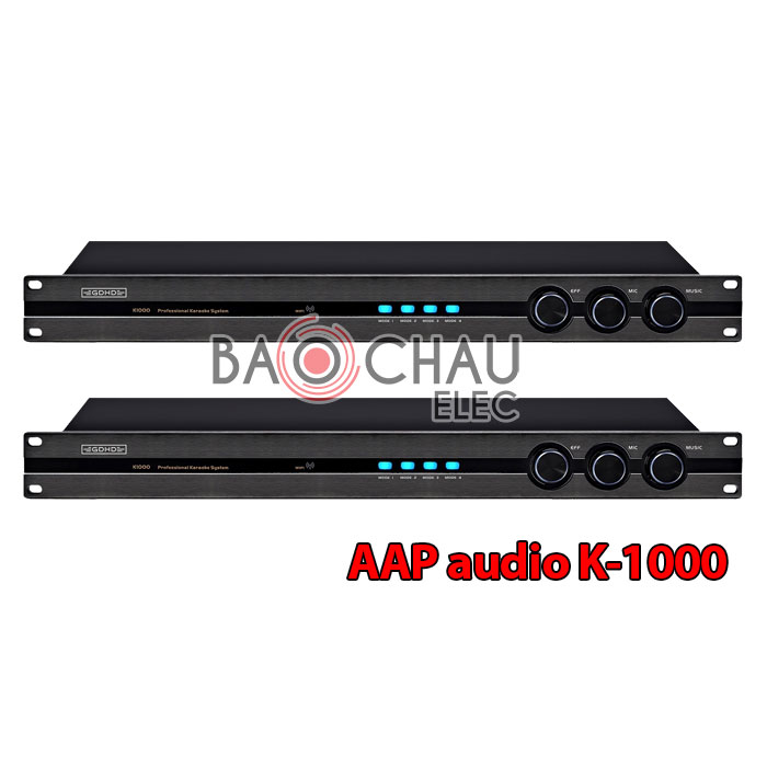 aap-audio-k-1000